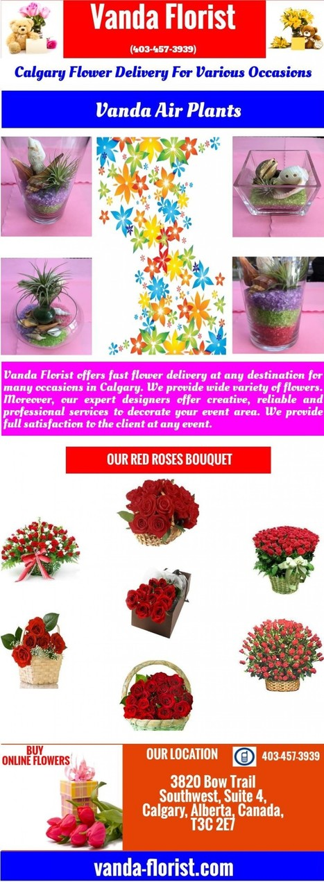 Calgary Flower Delivery For Various Occasions | Vanda Florist | Scoop.it