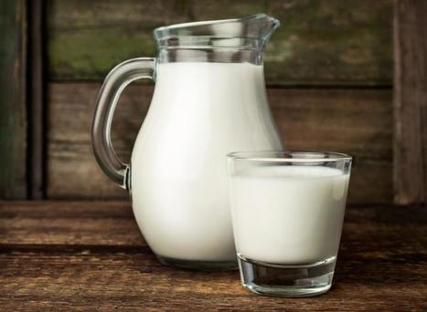 3 Glasses Of Milk A Day May Keep Dementia Away: Antioxidants In Milk Protect ... - Medical Daily | Glutathione and Good Health | Scoop.it
