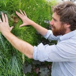 La culture hors-sol pour nourrir les villes du futur I Demain la Ville | Smart agriculture & ruralité : | Scoop.it