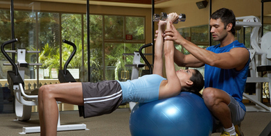 Peter Calder: Is gym work really good for you? | Health and Fitness | Scoop.it