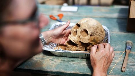 Long Buried By Bad Reputation, Philistines Get New Life With Archaeological Find | News in Conservation | Scoop.it
