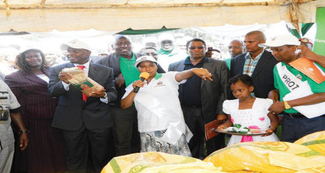 Kenya: Maize farmers get high yielding maize seed variety that doubles harvest | MAIZE | Scoop.it