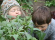Don't Call It 'Dirt': Why Healthy Soil Means Healthy People | Sustain Our Earth | Scoop.it