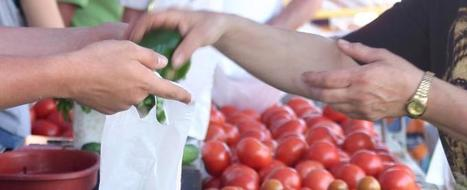 Holland Farmers Market News: July 20, 2012 | Eat Local West Michigan | Scoop.it