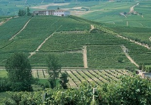 Barolo producers split as court reverses Cannubi ruling | Autour du vin | Scoop.it
