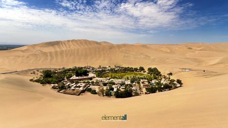 El blog, tu oasis. Sobreviviendo en el desierto | Social Media | Scoop.it