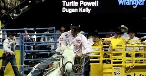 "Fran Jurga`s Hoof Blog: Laminitis-Surviving Rodeo Star ""Vegas"" Is Back: Turtle Powell's AQHA Roping Horse of the Year Returns to National Finals Rodeo 