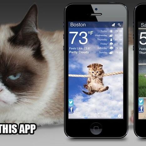 Weather App Brings Grumpy Cat to Your Daily Forecast | Les chats c'est pas que des connards | Scoop.it