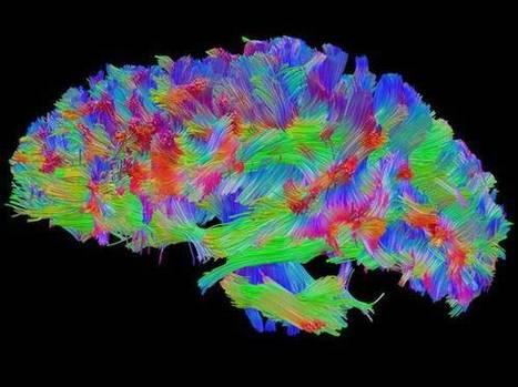 Chi ricorda troppo ricorda male | Pianeta Psicologia | Scoop.it