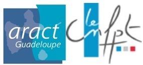 Colloque sur l'innovation sociale en Guadeloupe | Coopération, libre et innovation sociale ouverte | Scoop.it