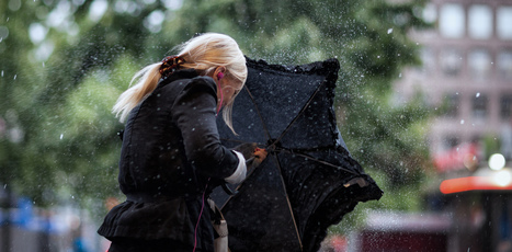 The smell of rain: how a new word has been invented | Worder Woman | Scoop.it