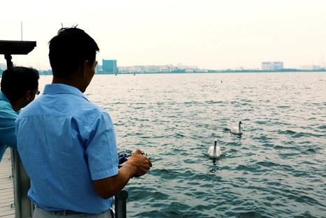 Évaluer la qualité de l'eau avec un robot cygne - H+ Magazine | Gestion des services aux usagers | Scoop.it
