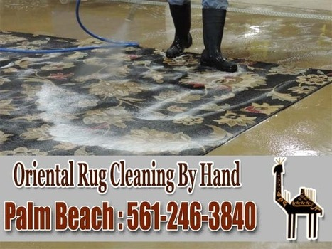 Commercial Carpet Cleaning Services West Palm Beach | Video Promotion and Creation Service | Scoop.it