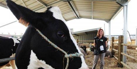 La vie de la ferme expliquée aux citadins | Agriculture en Dordogne | Scoop.it