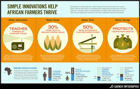 Africa: Simple Innovations Help African Farmers Thrive | Digital Digest | Scoop.it