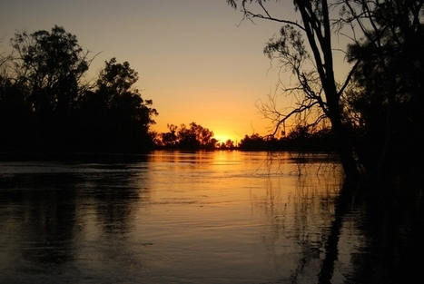 Environmental Problems in Australia | Australian environment | Scoop.it