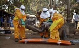 Ebola threat to Guinea Bissau rises as border zone heats up - Yahoo News | CLOVER ENTERPRISES ''THE ENTERTAINMENT OF CHOICE'' | Scoop.it
