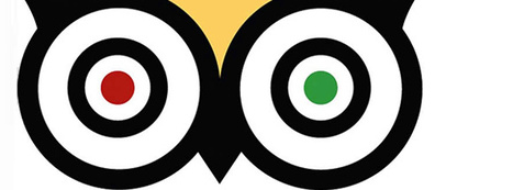 The Secrets to TripAdvisor's Impressive Scale | Bite Size Business Insights | Scoop.it
