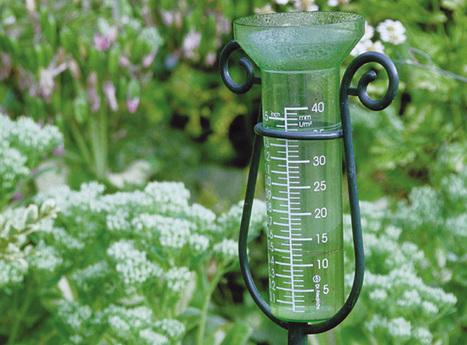 Quelle quantité d'eau de pluie espérer récupérer ? | jardins et développement durable | Scoop.it