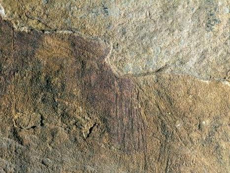 Descubiertos interesantes grabados rupestres levantinos en Alcaine (Teruel) | Arqueología, Historia Antigua y Medieval - Archeology, Ancient and Medieval History byTerrae Antiqvae | Scoop.it