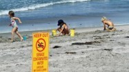 Beach pollution at third-highest level in 22 years | All about water, the oceans, environmental issues | Scoop.it