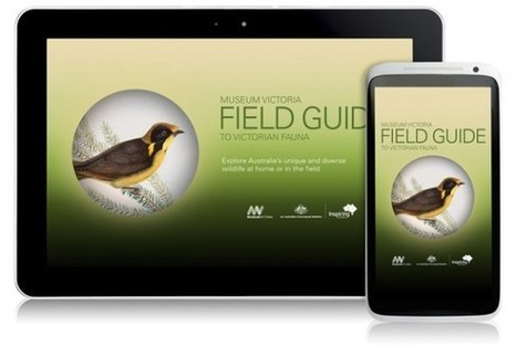 [IL Y A 2 ANS] L'application Field Guide du Museum Victoria se décline en 7 applications régionales | Clic France | Scoop.it
