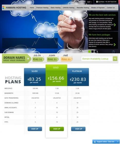 web hosting services | windows hosting | premium hosting | unlimited web hosting in India | Scoop.it