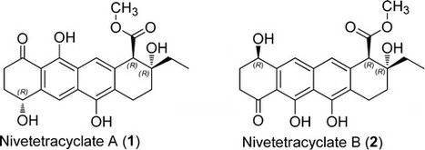 Nivetetracyclates A and B: Novel Compounds Isolated from Streptomyces niveus | Chemistry | Scoop.it