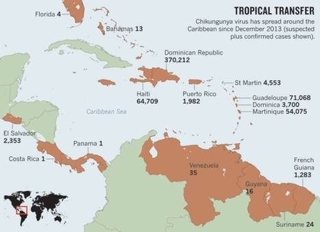 US assesses virus of the Caribbean | Sustain Our Earth | Scoop.it