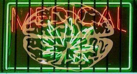 Migraine Frequency Decreased by Medical Marijuana | the plastic brain | Scoop.it