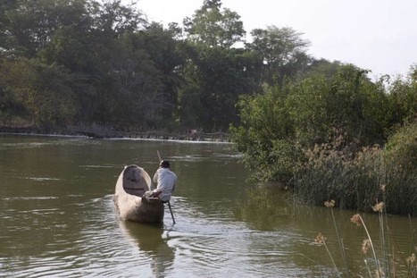 Commercial farms, climate shifts dry Tanzanian river basin | Food issues | Scoop.it