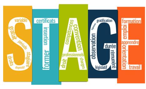 Tout savoir sur la nouvelle loi sur les stages | Actualités éducatives | Scoop.it