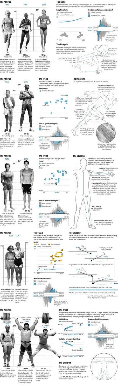 The Physics Of Olympic Bodies | HealthSmart | Scoop.it