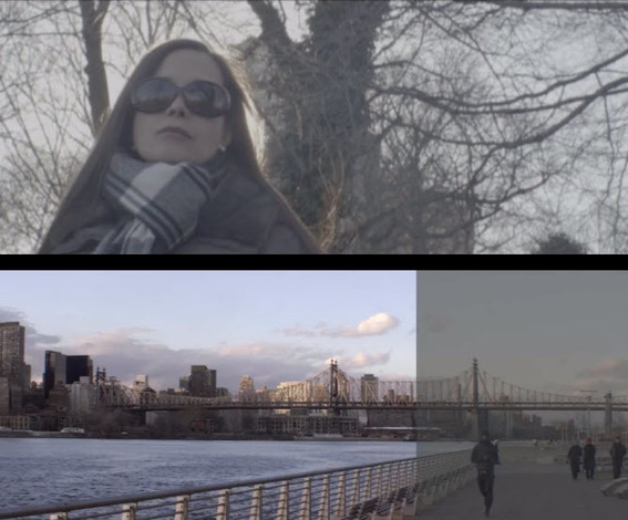 Eduardo Angel Shows How to Shoot Anamorphic with Panasonic GH4 & Firmware Update 2.2 (& V-Log L)