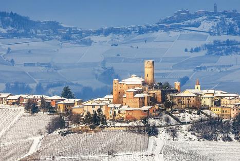 14 Magical Photos Of Vineyards In The Winter | VinePair | Wine News | Scoop.it