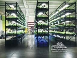 World's largest vertical farm to open in Pennsylvania @ Agrihort ... | Cityfarming, Vertical Farming | Scoop.it