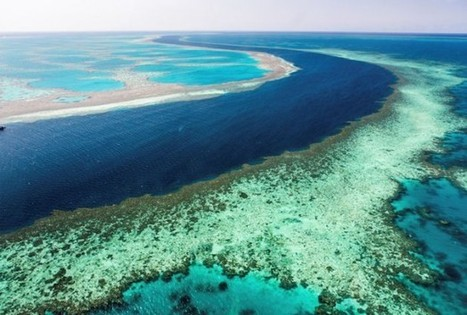 Scientists Working To Protect Australia's Great Barrier Reef - RedOrbit | Great Barrier Reef dumping and dredging | Scoop.it