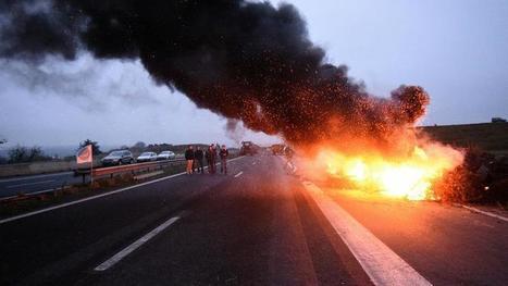 Les agriculteurs mitigés après l'annonce de la baisse des cotisations sociales - Le Figaro | Le Fil @gricole | Scoop.it