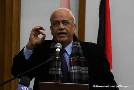 Erekat: International community must stop Israeli aggression 'before it is too late' | Human Rights and the Will to be free | Scoop.it