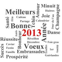 Meilleurs voeux pour l'année 2013 | Revue de Web par ClC | Scoop.it