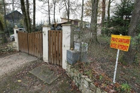 Dordogne : un cas de grippe aviaire détecté chez un particulier à Biras | Toxique, soyons vigilant ! | Scoop.it