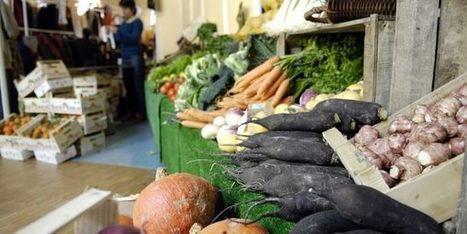 Une réforme européenne toxique pour les agriculteurs biologiques? | Made In Sud de France | Scoop.it