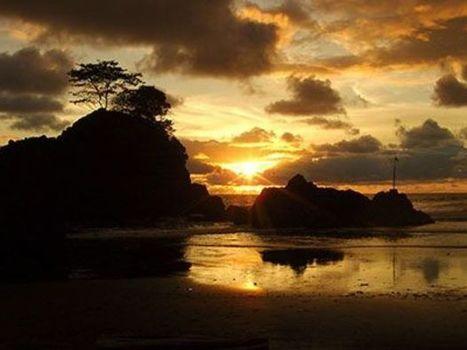 Nuevo sitio web para planear ecoturismo en Colombia | Turistica.co | Scoop.it