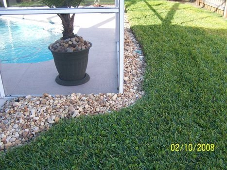Learn more about Landscaping in Tampa | Landscaping | Scoop.it