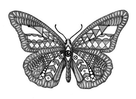 Patterned Butterfly Eye, Black and White Digital Art Print of an Original Fine Art Line Drawing | Classroom Gatherings | Scoop.it