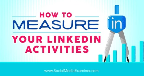 How to Measure Your LinkedIn Activities : Social Media Examiner | Integrated Brand Communications | Scoop.it