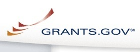 USAID announces Development Grants Program funding for local NGOs to foster grassroots implementation | Funding Opportunities in Programmes Supporting Projects & Research | Scoop.it