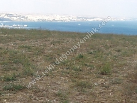 Süper Deniz ve Doğa Manzaralı Satılık Tarla | CeNGiZOnaY | Scoop.it