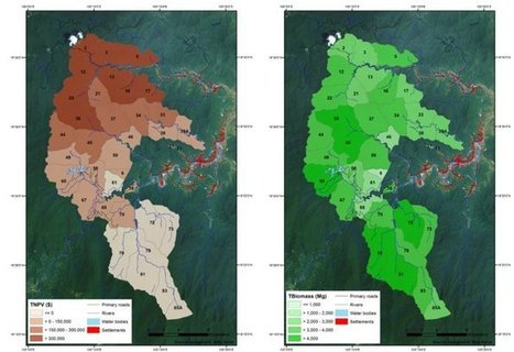 Evaluando ecosistemas desde el espacio - #Geomática #Teledetección #Satélite | Pasión por la Geoinformación | Scoop.it