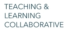 Building Community and Interaction Online | Teaching & Learning Collaborative | The George Washington University | Learner Interaction | Scoop.it